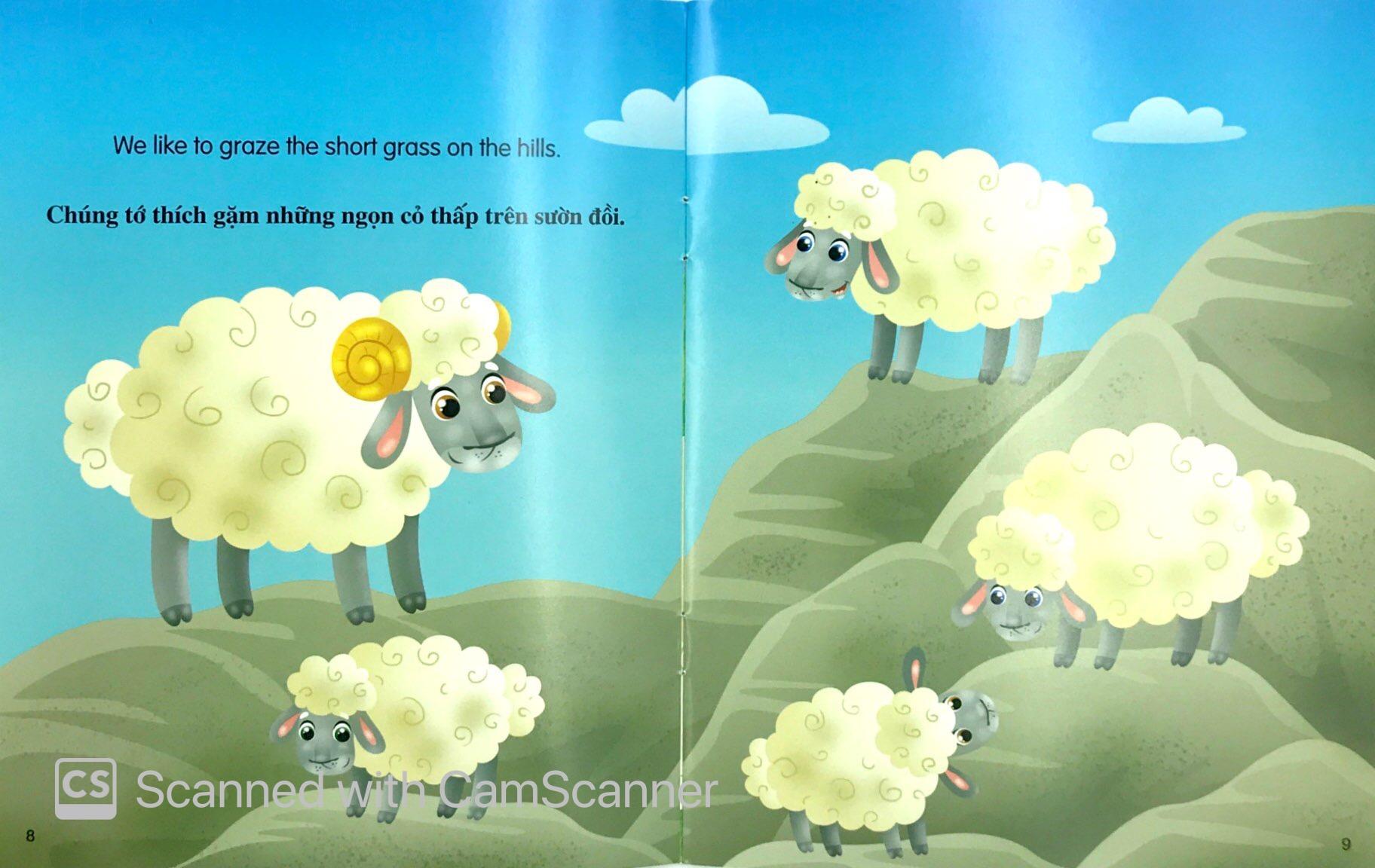 Sách Những Câu Chuyện Về Thế Giới Động Vật - Tớ Là Một Chú Cừu - I Am A  Sheep (Song Ngữ Anh - Việt) - FAHASA.COM